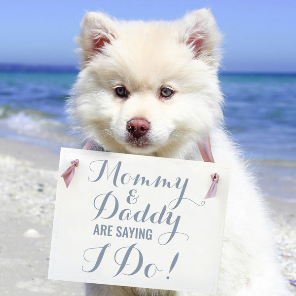 Mommy & Daddy Are Saying I Do! Sign for Dogs or Kids