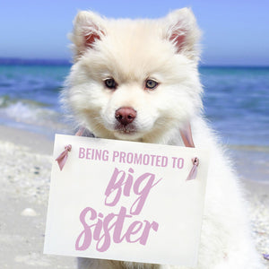 Being Promoted To Big Sister Sign for Dog or Kid