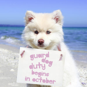 Guard Dog Duty Begins Sign