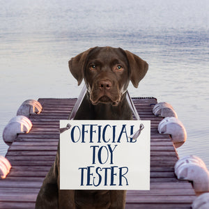 Official toy tester sign