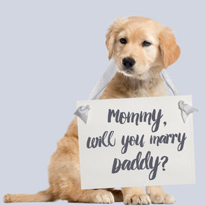Mommy Will You Marry Daddy Proposal Sign