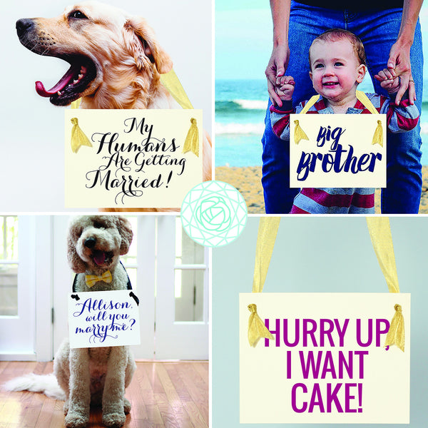 Don't Worry Ladies I'm Still Single | Ring Bearer  Banner