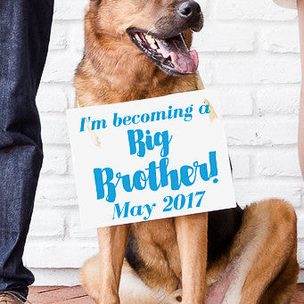 Becoming a Big Brother Banner