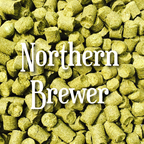 Northern Brewer (1oz)