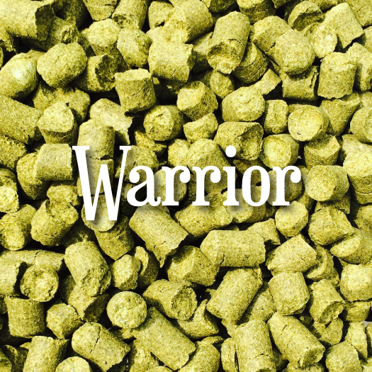 Warrior® (1oz)