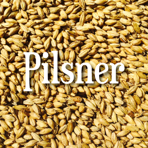 Dingemans Pilsen Malt