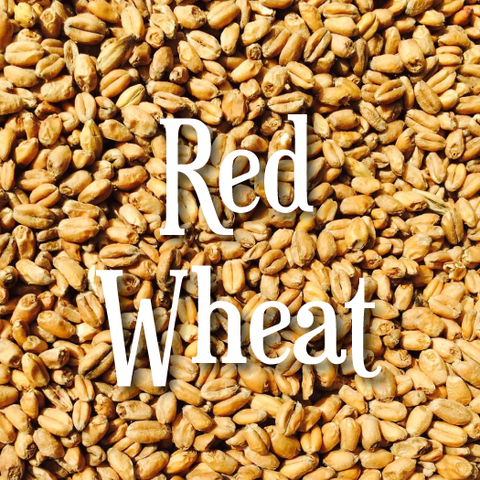 Riverbend Appalachian Wheat