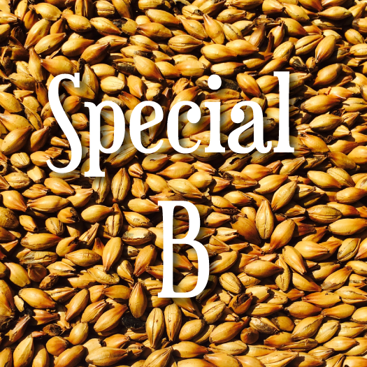 Special B