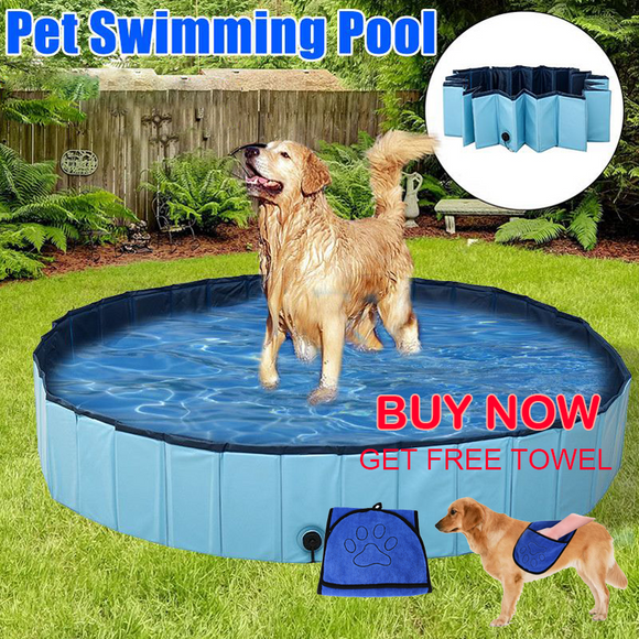 Foldable Dog Pool  August 14, 2020