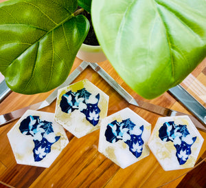 Cyanotype In the Beginning Coasters