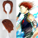 Hunter X Hunter Hisoka Wig Cosplay