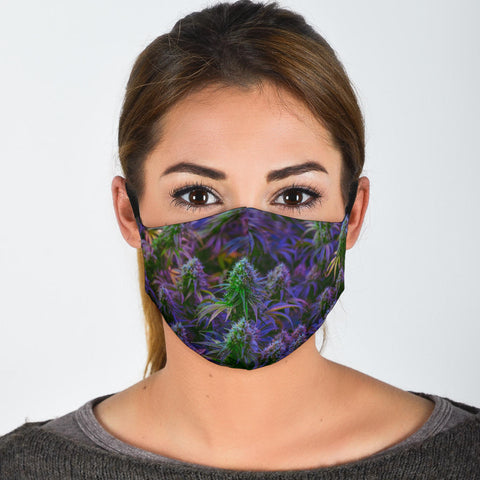Cannabis Face Mask + 2 Free Filters