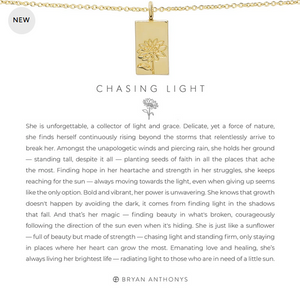 Bryan Anthonys Chasing Light Necklace