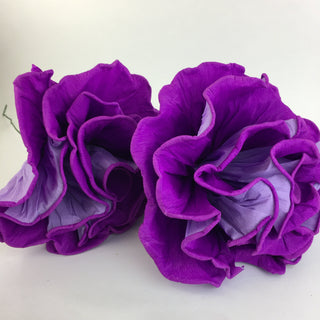 Giant Mexican Paper Flowers - Zinnia Folk Arts