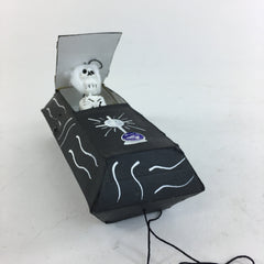 Pop-Up Day of the Dead Coffin