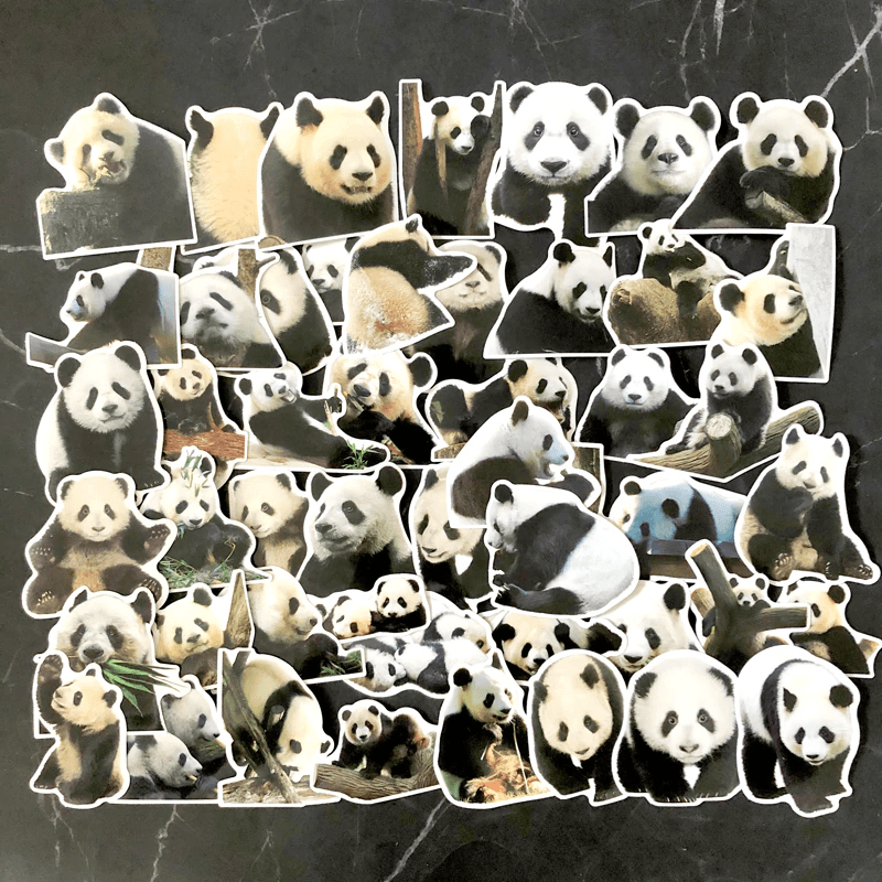 Panda Bear Stickers