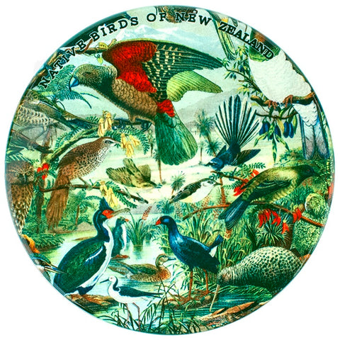 Native Birds of New Zealand Prestige Coaster Set