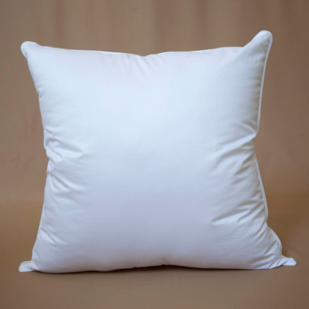 Euro_Pillow_Dreamticket_2_RDG75G4WN19Q.jpg