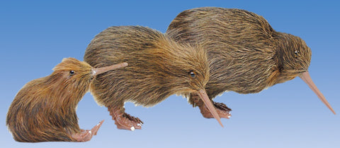 Realistic Brown Fur Kiwi