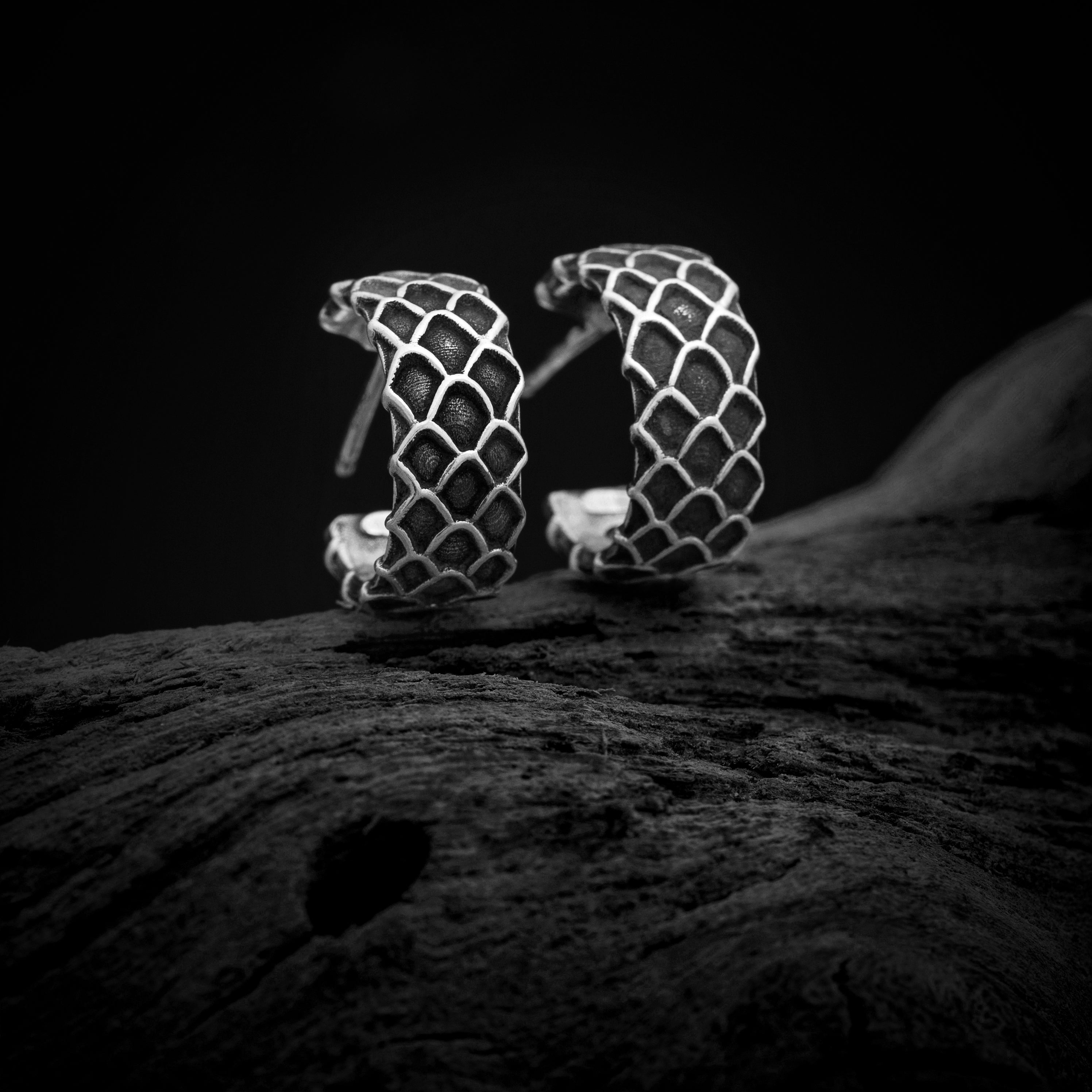 Dragon Scale Hoop Earrings