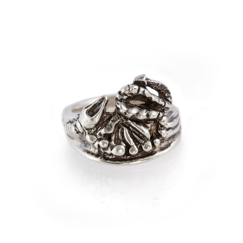 Birth of Baby Dragon Ring