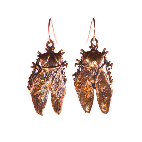 Horsefly Earrings Bronze