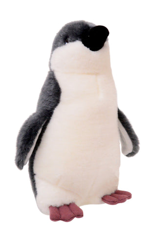 Animalia Fairy Penguin