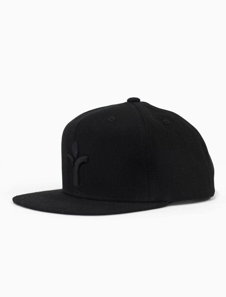 Icon Blacked Out Snapback