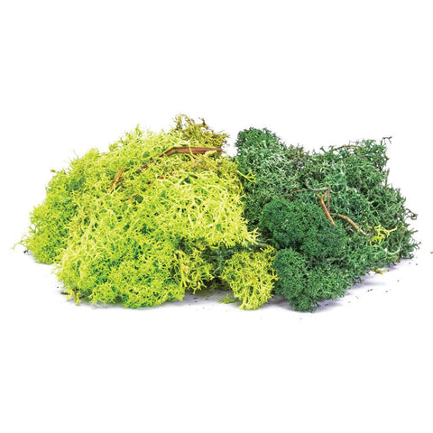 Image of HORNBY LICHEN - GREEN MIX