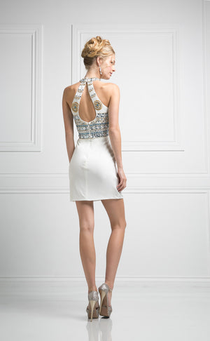 SHORT FITTED DRESS WITH AUSTRIAN CRYSTAL STYLE #CND973 - NORMA REED - 4