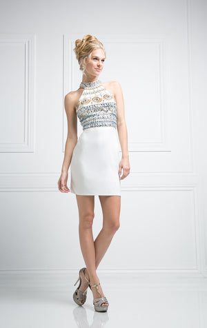 SHORT FITTED DRESS WITH AUSTRIAN CRYSTAL STYLE #CND973 - NORMA REED - 3