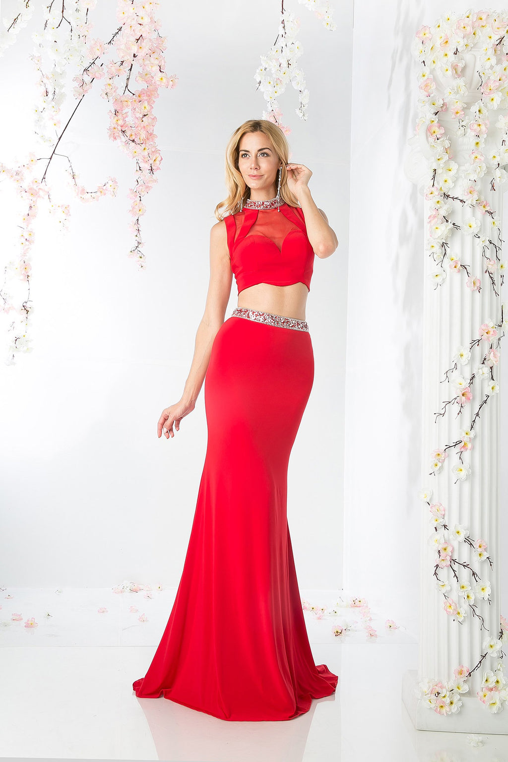 LONG TWO PIECE DRESS WITH AUSTRIAN CRYSTAL STYLE #CK20 - NORMA REED - 1