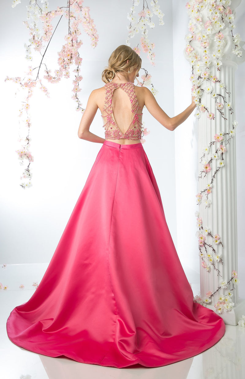 TWO PIECE FLOWING BALL GOWN STYLE #CNDCP811 - NORMA REED - 2
