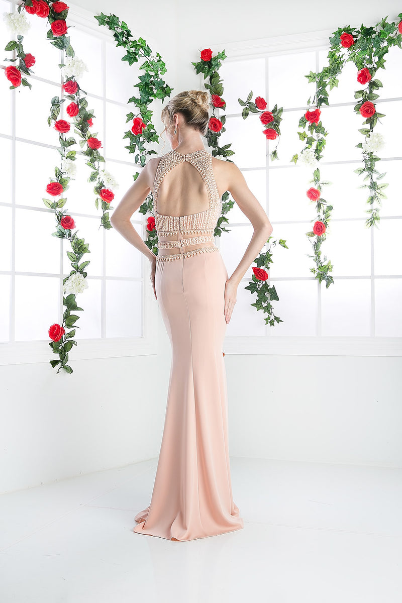 LONG CHIFFON DRESS WITH HIGH NECKLINE STYLE #CNDCR749 - NORMA REED - 4