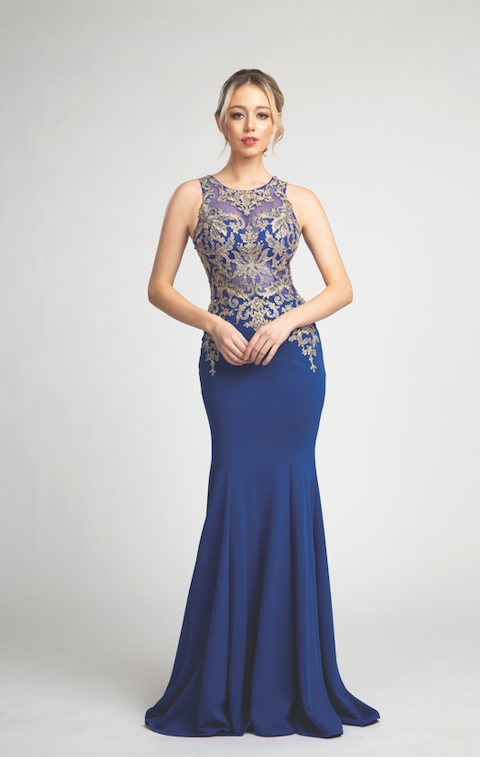 Stunning Illusion Neckline Gown with Glitter Embroidery and Fitted Bodice #FA053020