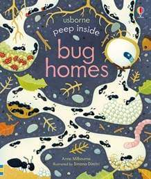 Peep Inside Bug Homes