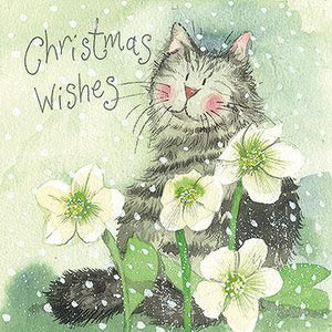 Snow Roses Christmas Cards Charity Pack