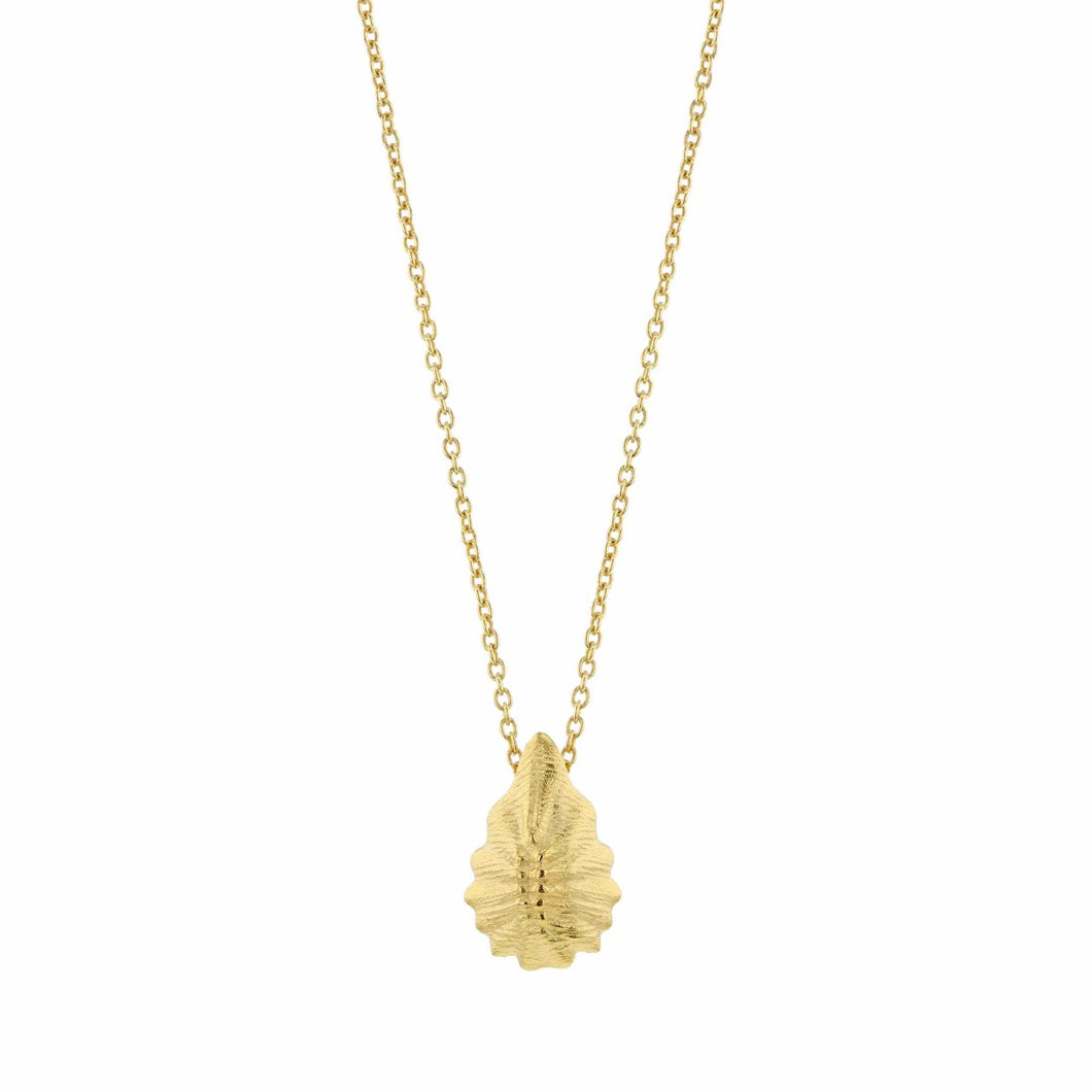 Hasla Seashell, Birth of Venus necklace Gold