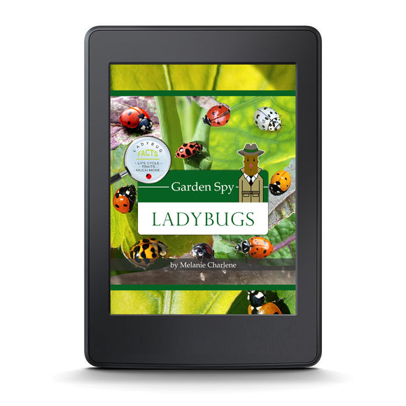Garden Spy Ladybugs by Melanie Charlene (E-Book)