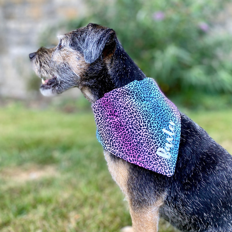 Personalised Rainbow Leopard Dog Bandana