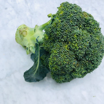 Broccoli Head (1 Head)