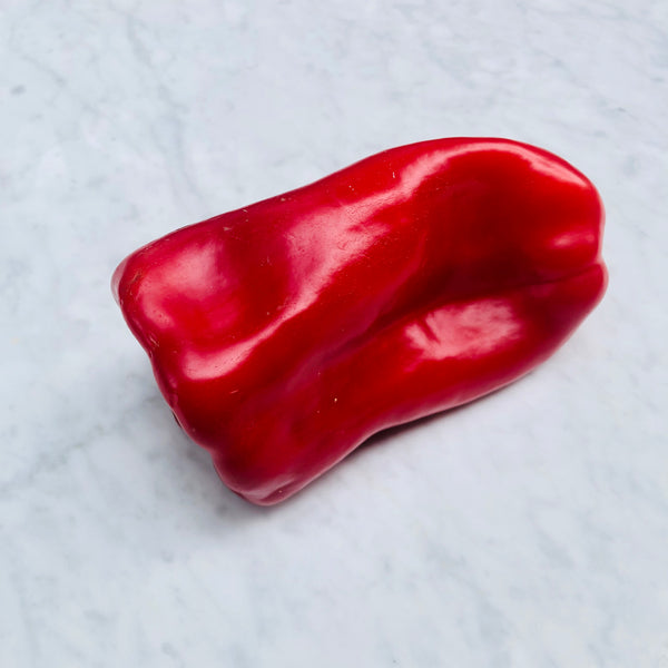 Capsicum Red (1 unit)
