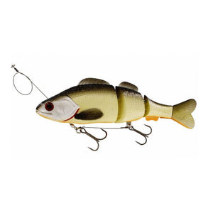 Percy the Perch 200mm HL inline