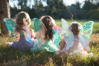 Real Fairy Wings