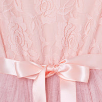 Libby Lace Tutu - Tea Rose