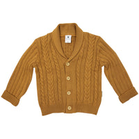 Brown Grandpa Cardigan