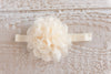 Lace Cream Headband