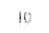 Rainbow Mini Huggie Earring