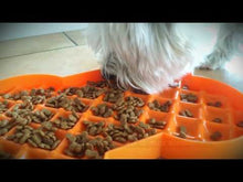 Load and play video in Gallery viewer, Video Slow Feeder Westie Orange Dry Food SloDog