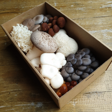 Load image into Gallery viewer, Gourmet Mushroom Gift Box 500g
